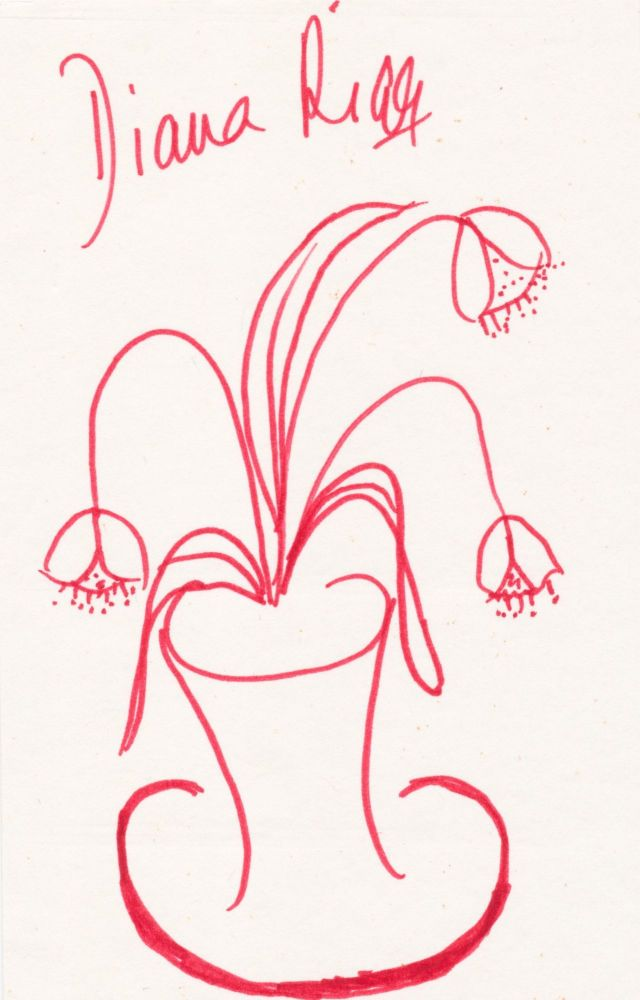 Charming Signed Sketch, 8vo, flowers in vase rendered in red ink or fine marker. DIANA RIGG.